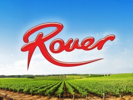 Rover Coaches Branding Brand and Logo and vineyard