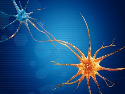 Newcastle Neuro Diagnostics Intro Graphic